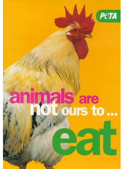 Animals Are Not Ours to Eat