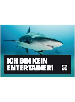 Ich bin kein Entertainer Hai Poster